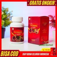 Promo Walatra Sarmucare Sarang Semut Obat HIV, AIDS - Pekanbaru Riau
