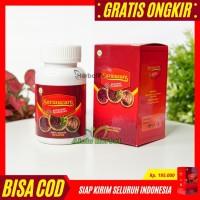 Walatra Sarmucare Kapsul Obat Herbal Sarang Semut Papua Asli