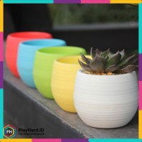 Mini Pot Bunga Hias Kaktus Tanaman 5 PCS - Multi-Color