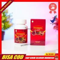 Sarang Semut Asli Walatra Sarmucare Obat Ambeyen, Wasir Herbal Di
