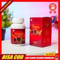 Walatra Sarmucare Sarang Semut Asli Obat Herbal Asam Urat Di Bengkulu