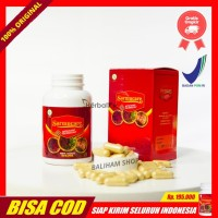 Original Sarmucare Walatra Sarang Semut Obat Diabetes Herbal Di