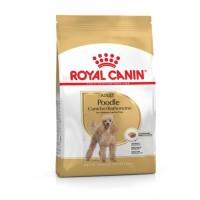 Royal Canin Poodle Adult 3kg