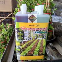 pupuk nutrisi cair hidroponik A & B MIX untuk sayuran daun isi 2 liter