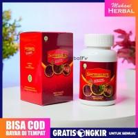 SARMUCARE Obat Herbal Sarang Semut Asli Original Pengganti Walatra