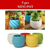 Mini Pot 5 pcs untuk Bunga Hias Kaktus dan Tanaman Lain