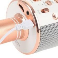 GET CASHBACK WS858 mic Portable Bluetooth Wireless Microphone Speaker