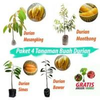 paket durian isi 4 cod