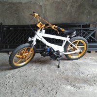bmx cub / Iron Duck / motor bmx
