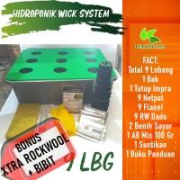Hidroponik Sistem Wick Pemula 9 Lubang Bonus Bibit dan Rockwool