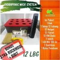 Pos Hemat Ongkir Hidroponik Sistem Wick Pemula 12 Lubang Bonus Bibit