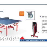 Tenis Meja Pingpong Double Fish 603 Original Import Table Tennis