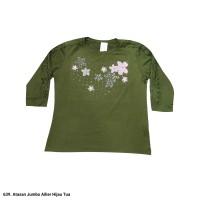 639.Atasan Wanita/Kaos Wanita AILIER(JUMBO)