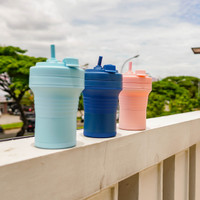 Collapsible Travel Cup with Straw 550 ML - Gelas Lipat - Foldable Cup