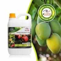 Pupuk Cair Organik Untuk Pohon Buah Mangga Isi 2 Liter