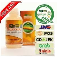 Obat Herbal Radang Paru paru Basah , Pneumonia , Asma , jelly gamat