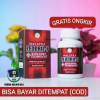 Obat Kanker & Tumor Kanker Payudara Ampuh Walatra Zedoril 7 Original