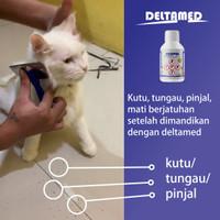 Deltamed untuk mandi kutu tungau caplak belatung lalat kucing anjing