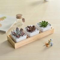 Sale 3 Grid Succulent Plant Fleshy Flower Pot Square Box Decorative