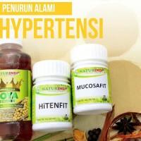 Jamu Herbal Naturindo Anti Hipertensi