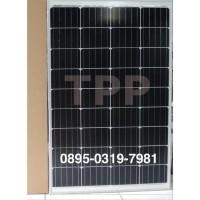 PROMO Panel Surya Mono 100WP Solar Panel 100 WP