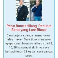 TERMURAH Pelangsing Stai Slim Asli Herbal Pembakar Lemak Pelangsing