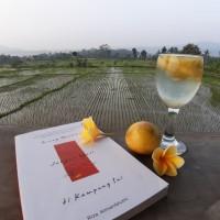 Orang Miskin Jangan Mati di Kampung Ini - Buku Riza Almanfaluthi