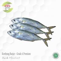 ikan kembung banjar grade A kualitas premium 500gr