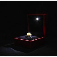Kotak Cincin Romantis dengan Lampu LED/ LED Light Ring Box - Merah