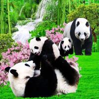 SELIMUT BONITA DISPERSE 3D PANDA