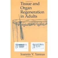 Tissue and Organ Regeneration in Adults Ioannis V. Yannas 2001 S