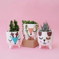 Paket bundle Pot & Kaktus Mini Leggie Animal Series