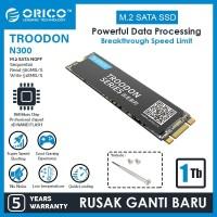 ORICO 1TB SSD M.2 SATA 2280 TROODON SERIES - N300-1TB