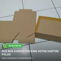 DUS BOX KARDUS PACKING KARTON POLOS - 1