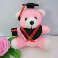 boneka wisuda 15 cm kado unik graduation