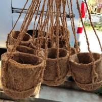 pot gantung sabut kelapa penyubur anggrek