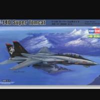 pesawat F-14D Super Tomcat 1/48 model kit hobby boss
