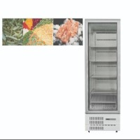 New 2020 !!! GEA UPRIGHT FREEZER BF60CP-76 SHOWCASE FROZEN FOOD