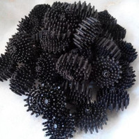 bioball bio ball media filter aquarium kolam rambutan 3,8cm
