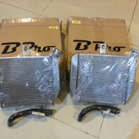 Cool Radiator Bpro new Kawasaki Ninja RR 150cc Gp