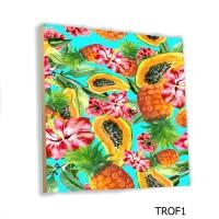 Hiasan Dinding Buah Tropical Fruit MDF 20x20cm Poster Pajangan Dinding