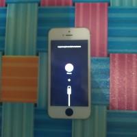 iPhone 5s Minus Stuck iTunes