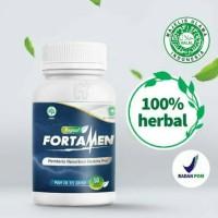 FORTAMEN - Herbal Suplemen Stamina BPOM Tahan Lama Penambah Sperma