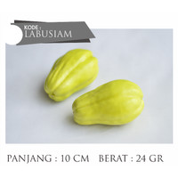 Sayur Labu Siam Artificial Artifisial Buatan Plastik Premium