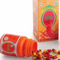 Best Product Vermint Isi 30 Kapsul Original Obat Tipes Typus Tipus