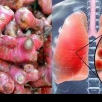 jual Jahe Merah fress 500gram-obat herbal