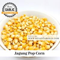 jagung pop corn 500 gr