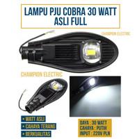 Lampu Jalan Sorot Flood PJU Cobra 30W 30 Watt COB