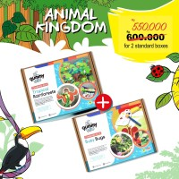 PROMO Tropical Rainforests & Busy Bugs