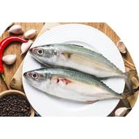 ikan kembung segar 500gr